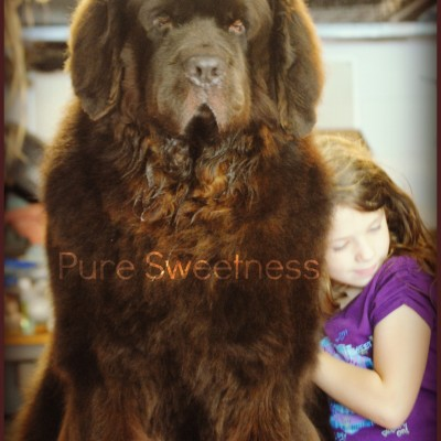 Wordless Wednesday. Pure Sweetness.