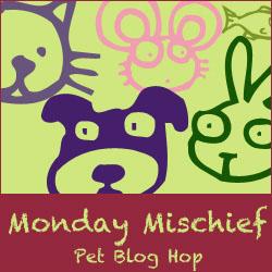Bloghop (1)