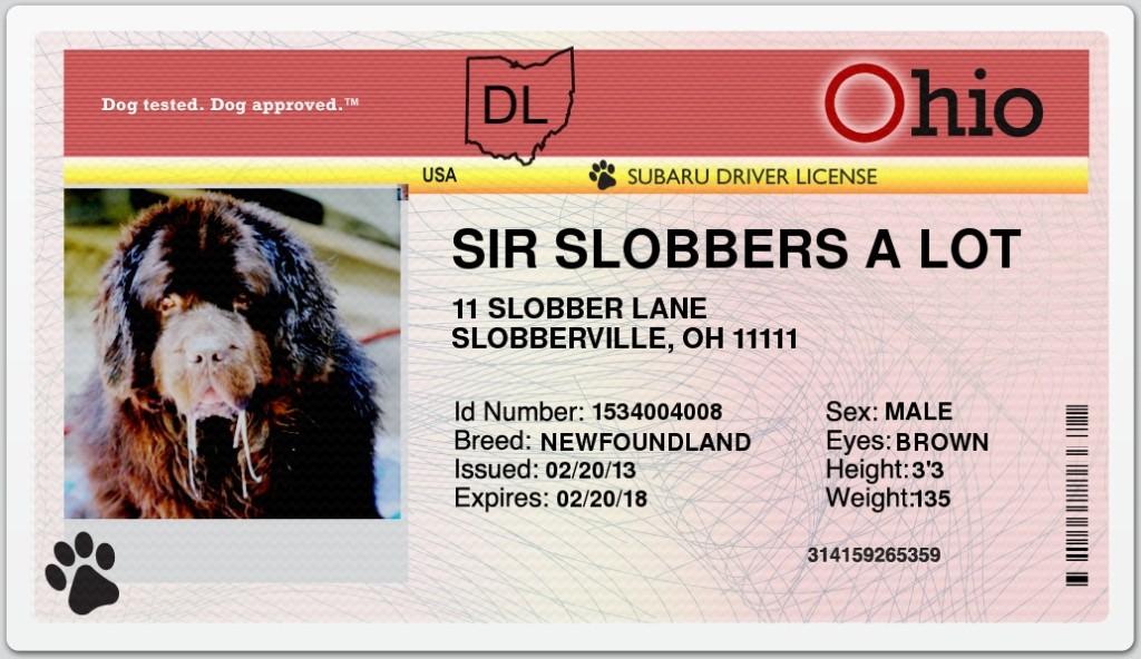 Sherman driver