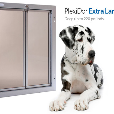 The PlexiDor Dog Door Install That Didn't Happen