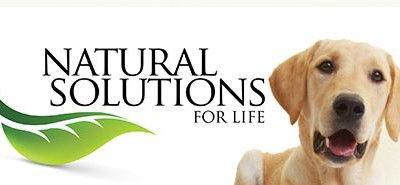Give A Hip And Joint Supplement To Your Dog With Confidence #NaturalStride