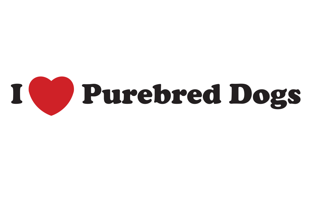 I Love Purebred Dogs png