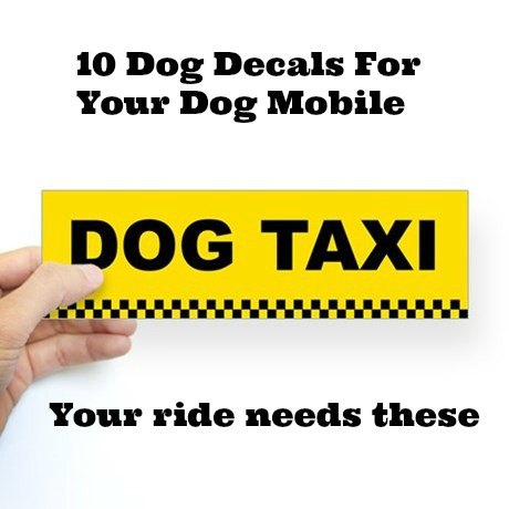 dog_taxi_bumper_sticker1