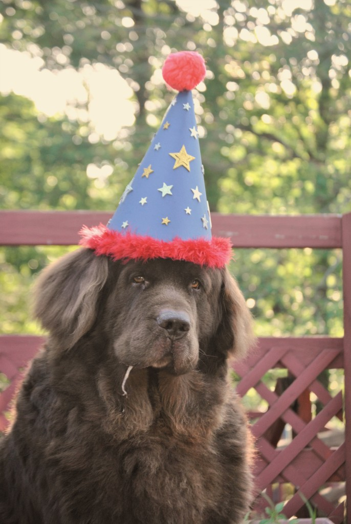 Happy Birthday Leroy
