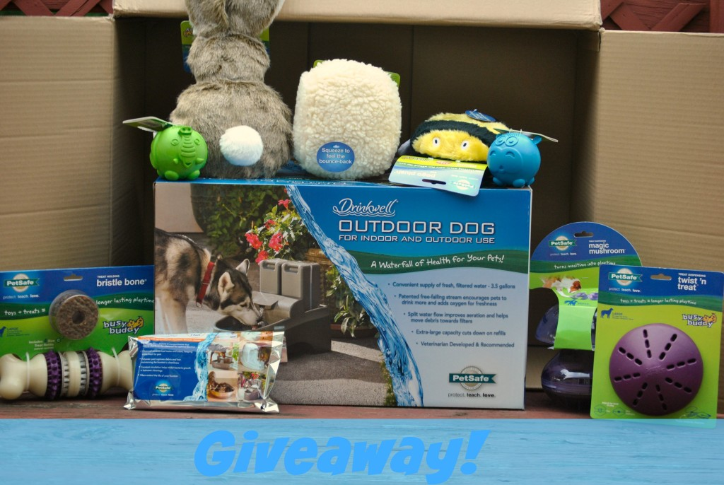 Drinkwell outdoor pet fountain giveaway