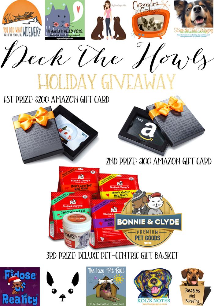 Holiday Giveaway Blog Post (2)