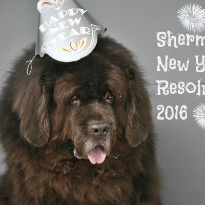Sherman's New Year's Resolutions