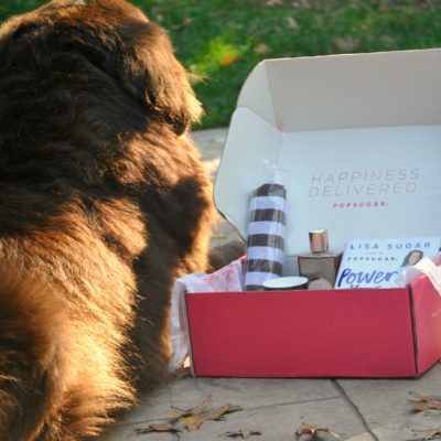 It's Not Your Box, It's My Box. POPSUGAR #MustHaveBox For Me.