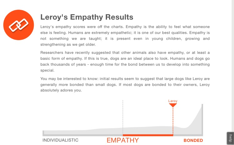 Leroy's Dognition Assessment #DiscoverYourDog