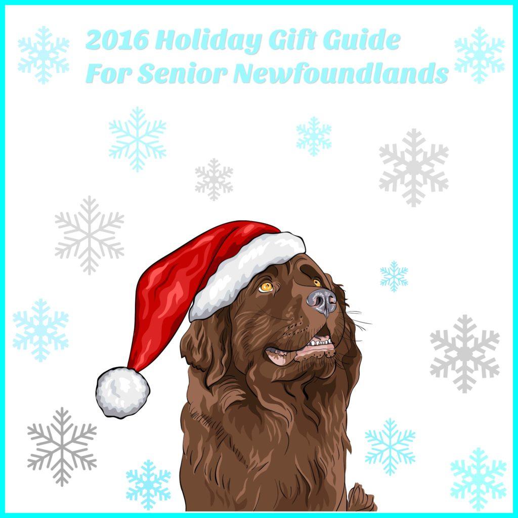 senior-holiday-gift-guide