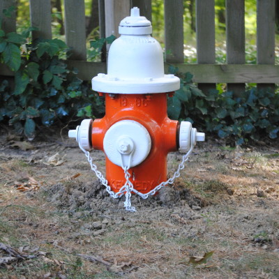 A Dog Fire Hydrant For Sherman and Leroy