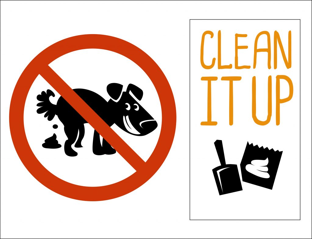 clean up your dog's poop