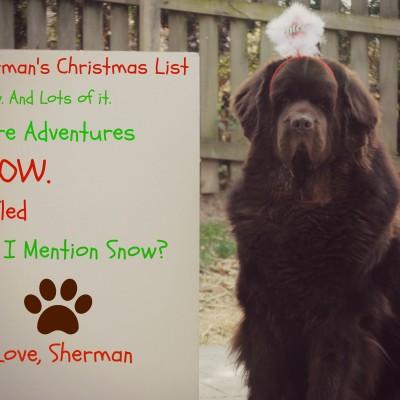 Monday Mischief. Christmas List Mischief