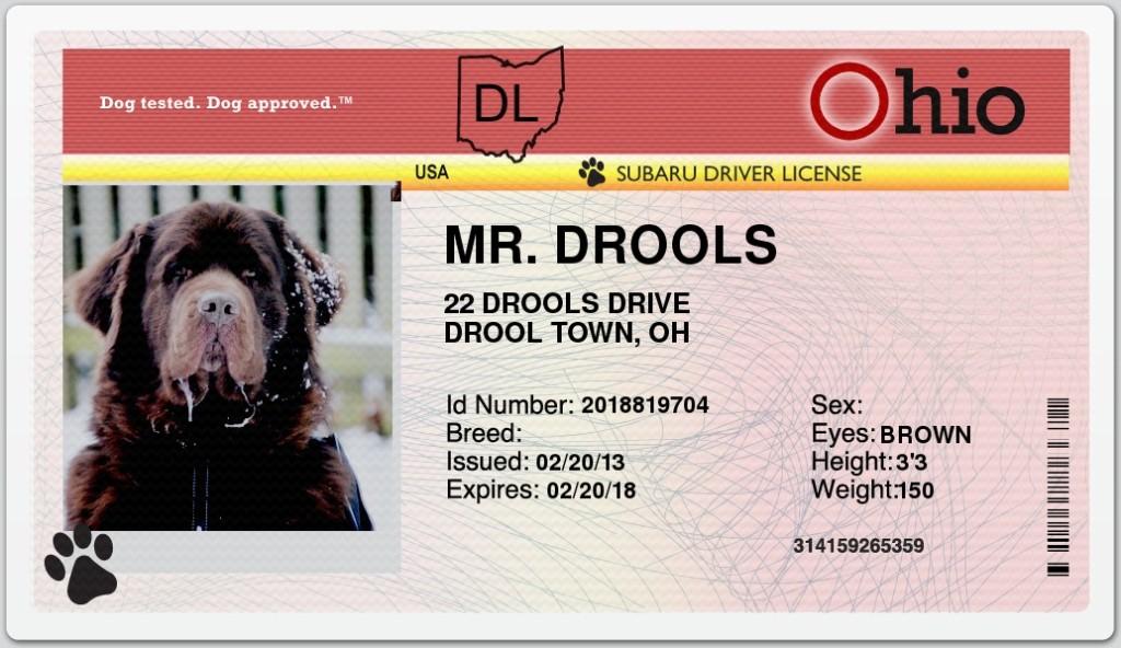 Leroy driver