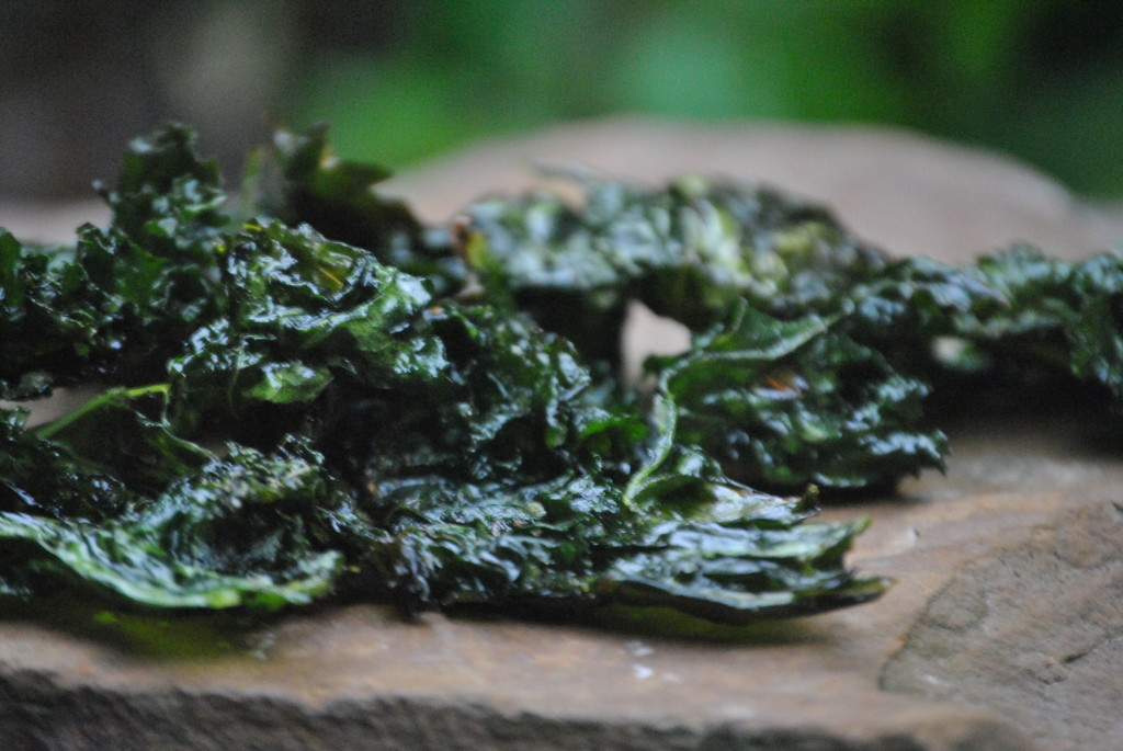 Easy To Make Kale Chips For Dogs