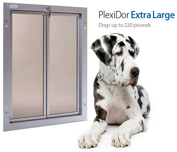 I Was So Excited When I Was Contacted To Do A Review On The PlexiDor Dog  Door A Few Months Ago.