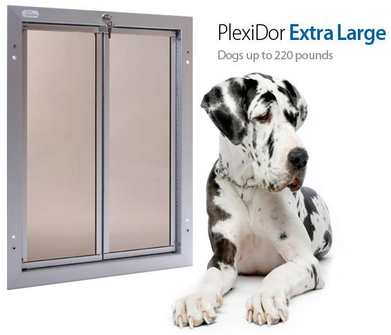 The Plexidor Dog Door Install That Didnt Happen Mybrownnewfies