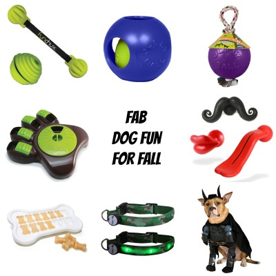 8 Fab Dog Products For Fall