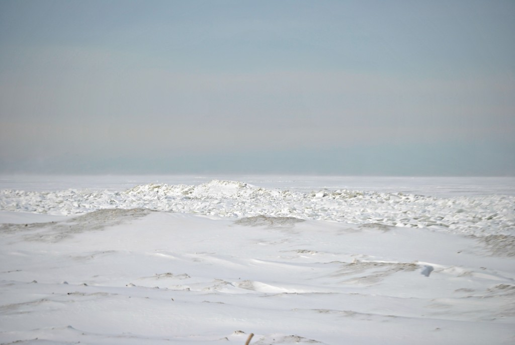 frozen lake erie 2014