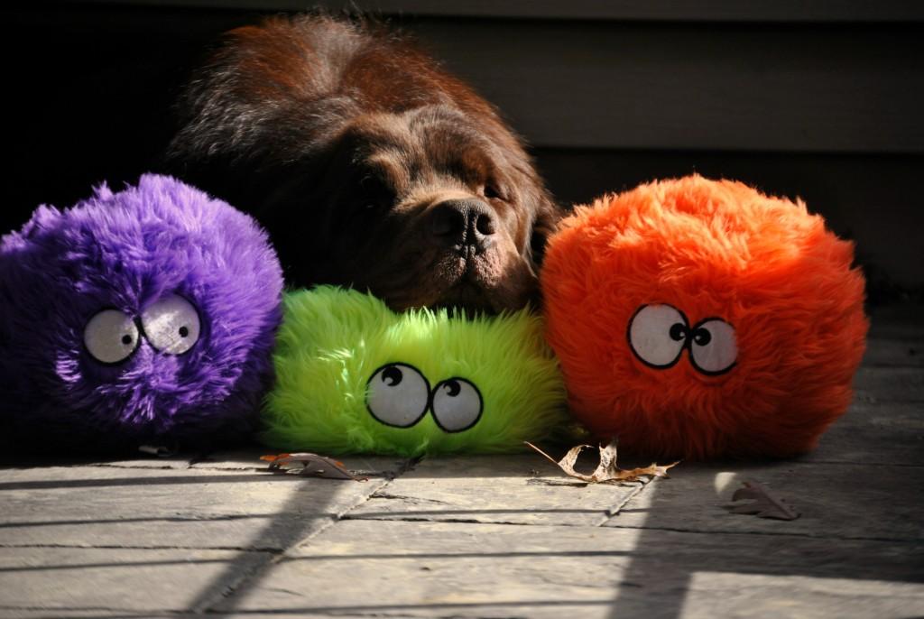 Favorite Dog Toy GoDog FurBallz