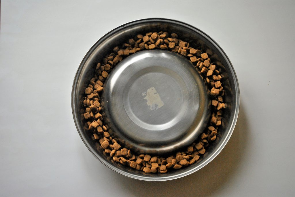 weighted dog bowl flipped over