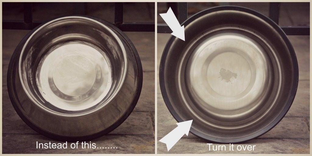 Dog Hack: If you want to slow down your dog's eating, flip over their non-slip dog bowl and put the food in the ring