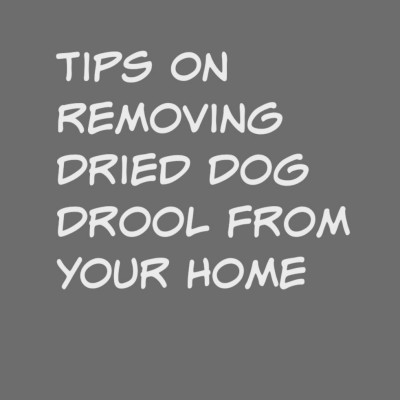 De-drooling. Tips On Removing Dried Dog Drool From Your Home