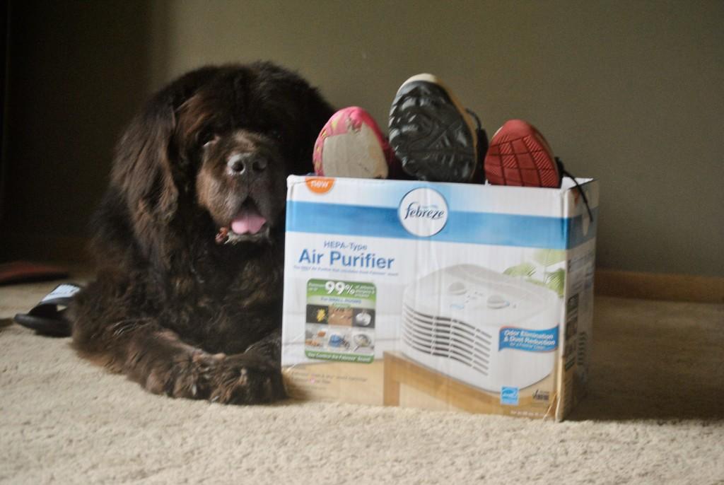 Febreze Air Purifier