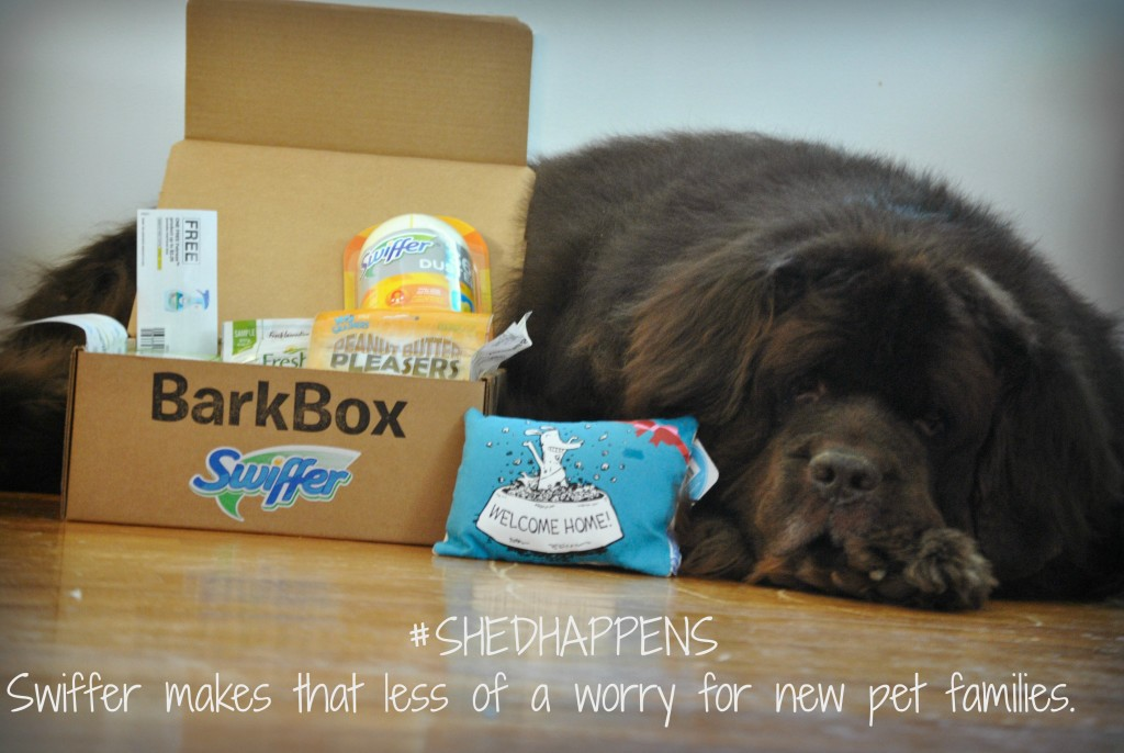 Swiffer Welcome Home Kit #ShedHappens