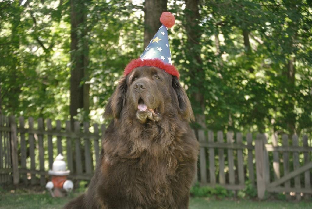 Dear Leroy On Your Birthday