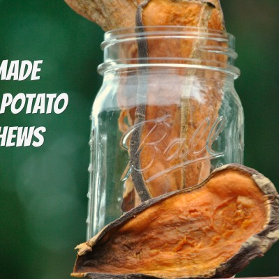 Easy To Make Sweet Potato Dog Chews
