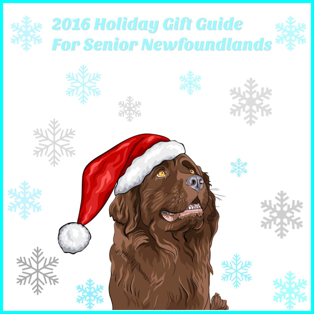 senior-holiday-gift-guide
