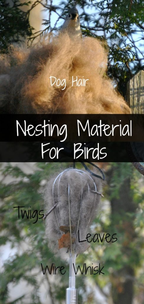 Use chemical-free dog hair, twigs, leaves and dirt placed in a wire whisk for birds to easily grab and use for nesting material