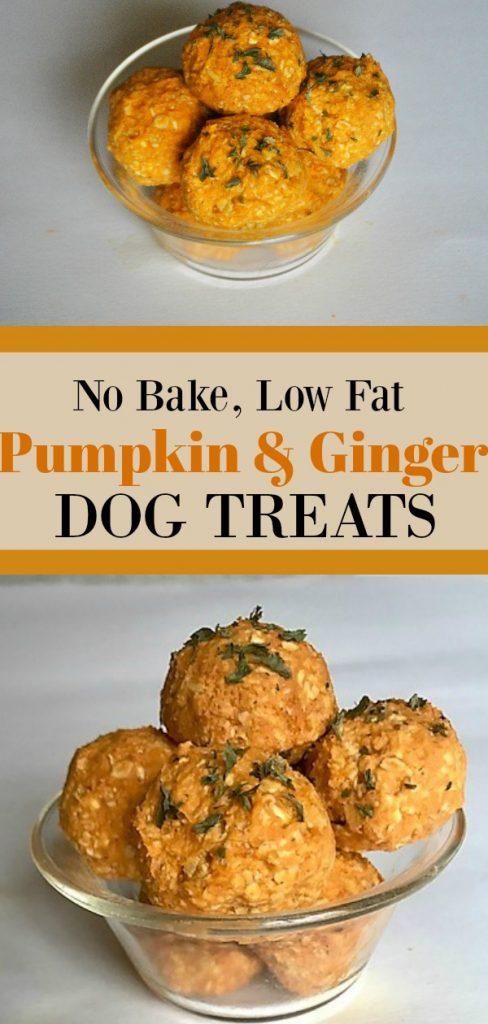 Pumpkin Ginger Dog Treat Recipe