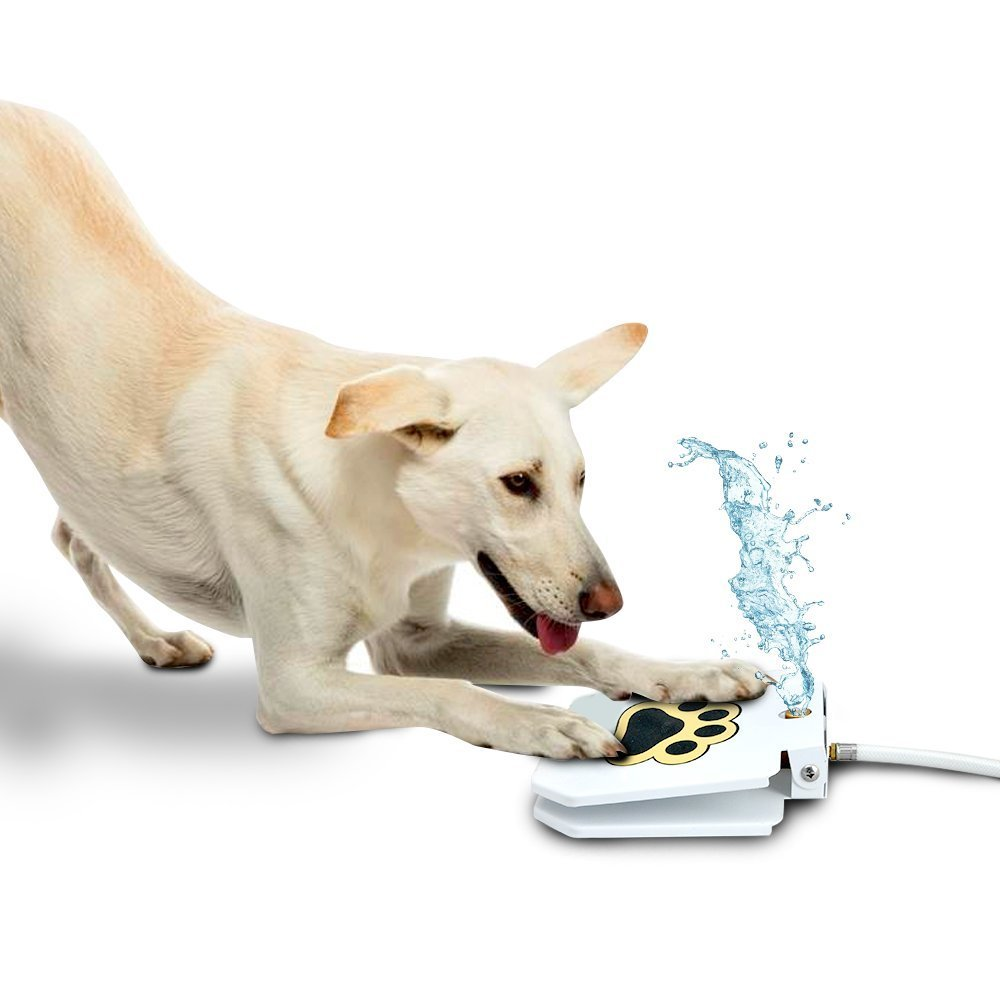 Forum on this topic: 12 Ways to Keep Your Pet Cool , 12-ways-to-keep-your-pet-cool/
