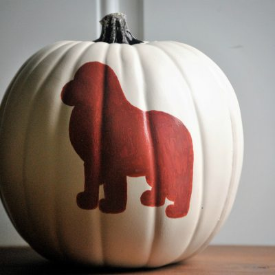 Easy Dog Pumpkin Carving Patterns