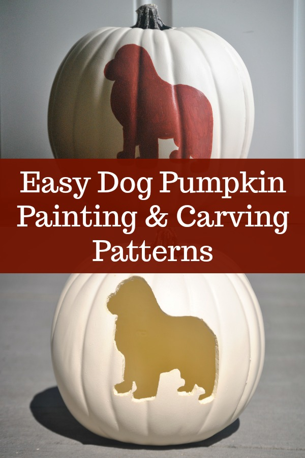 white and orange carving pumpkins with newfoundland dog pattern