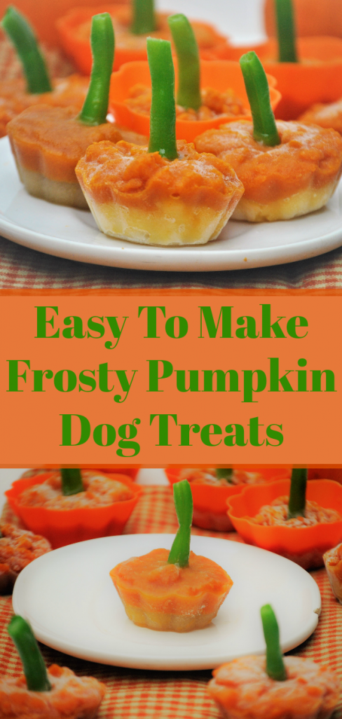 These frosty pumpkin dog treats are a perfect snack for your dog in the fall. They're easy to make and you can customize them to fit your dog's diet!