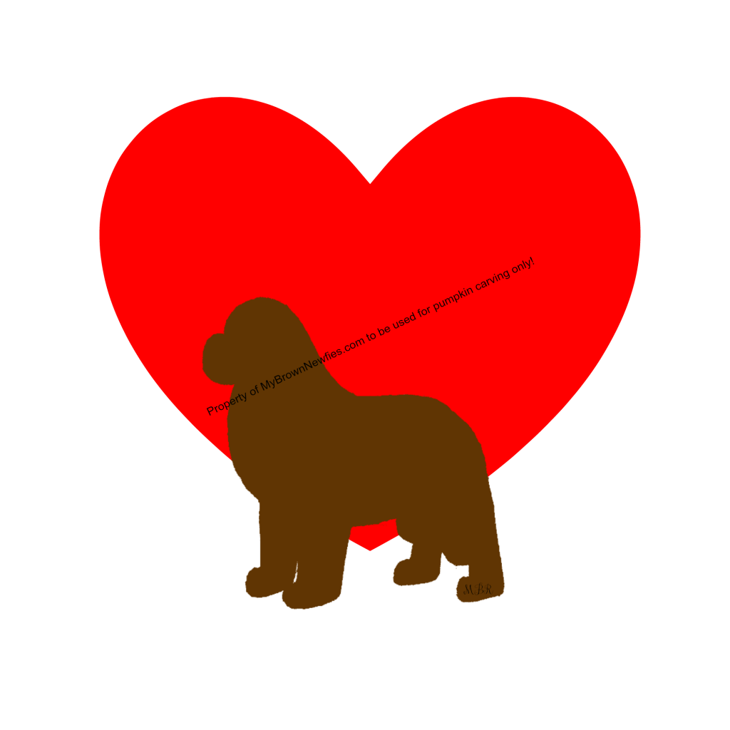 brown newfoundland dog heart pattern