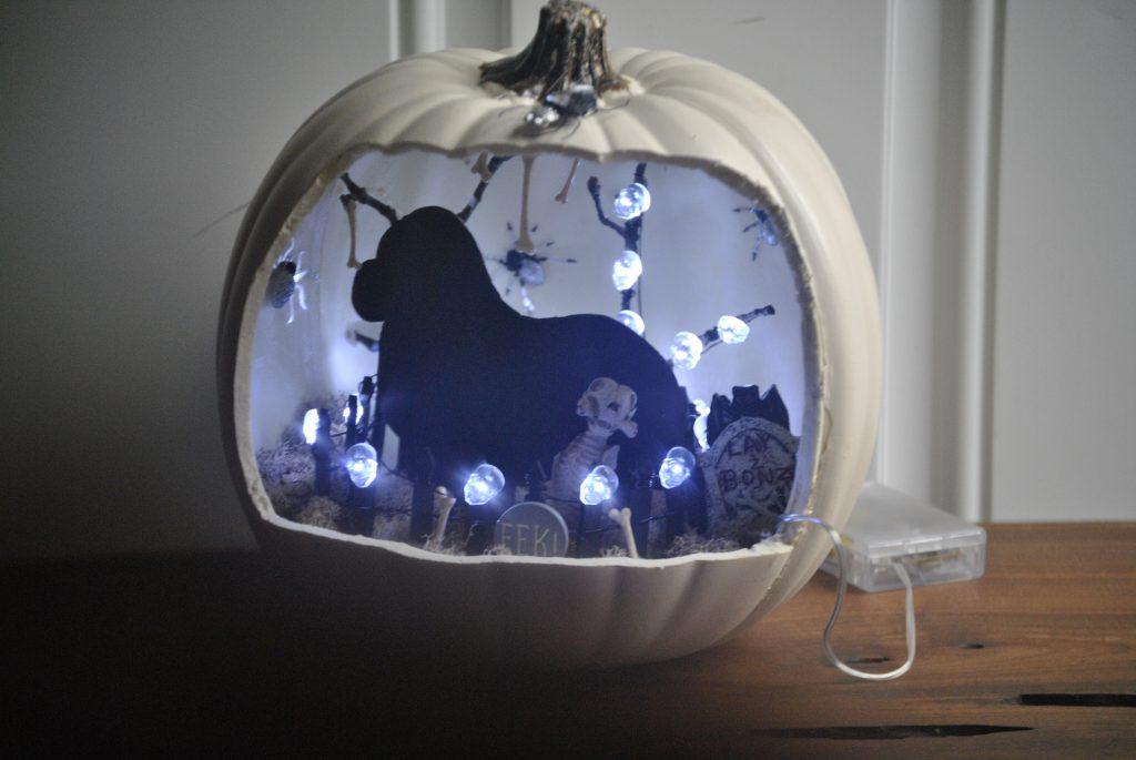 dog pumpkin diorama
