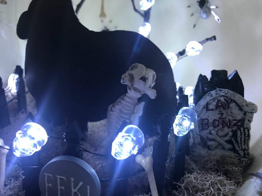 Inside of pumpkin diorama