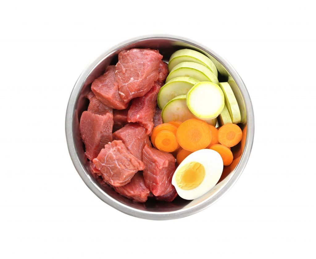 fresh dog food in a bowl