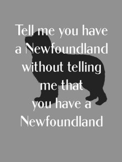 tell me you have a Newfoundland without telling me that you have a Newfoundland