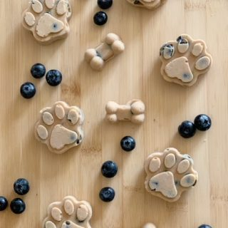 frozen banana blueberry dog treat