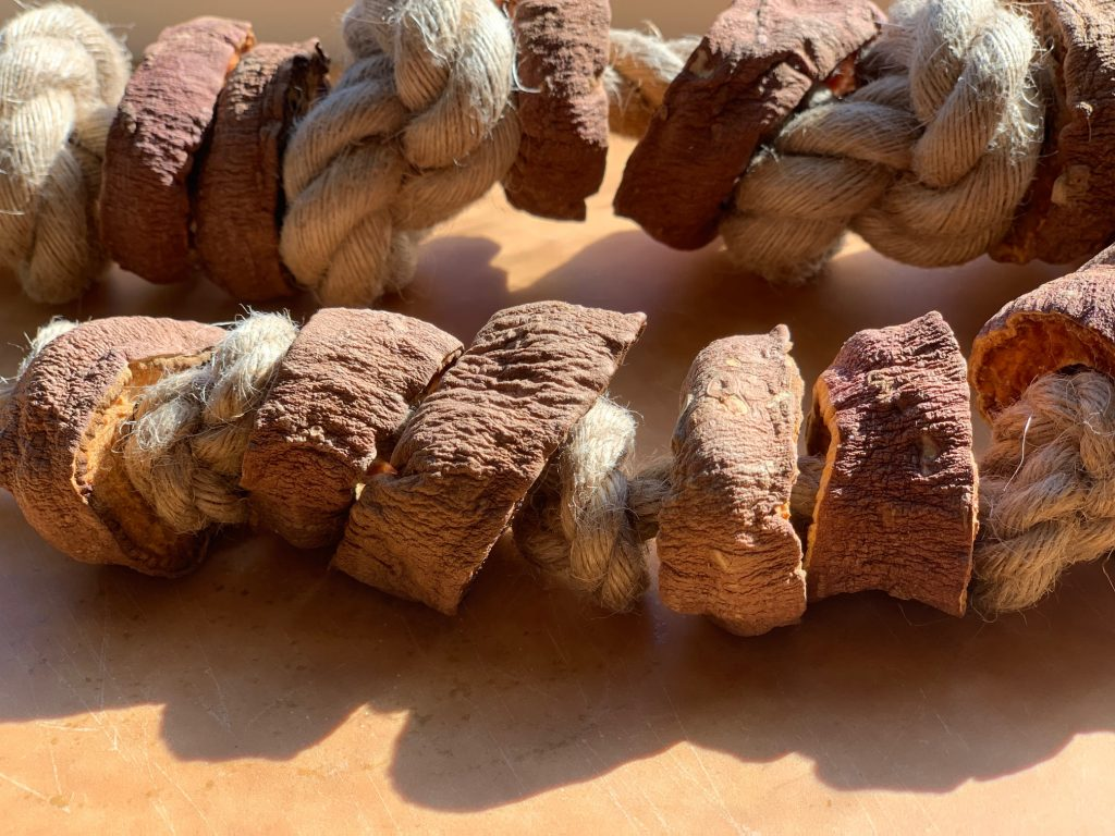 dehydrated sweet potato slices on rope for dog to chew on