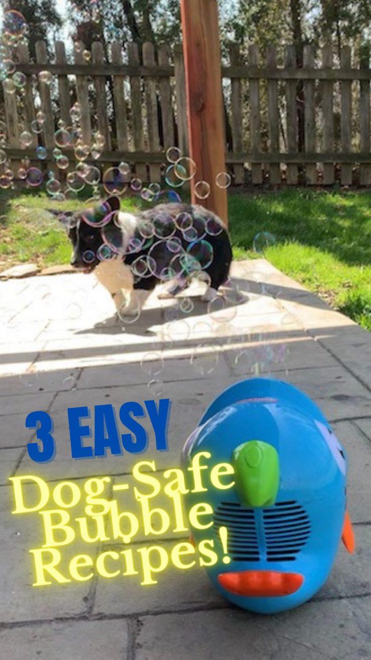3 easy dog safe bubble recipes